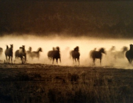 Bank Langmore - MC Ranch Adel, Oregon 1974 at Afterimage Gallery
