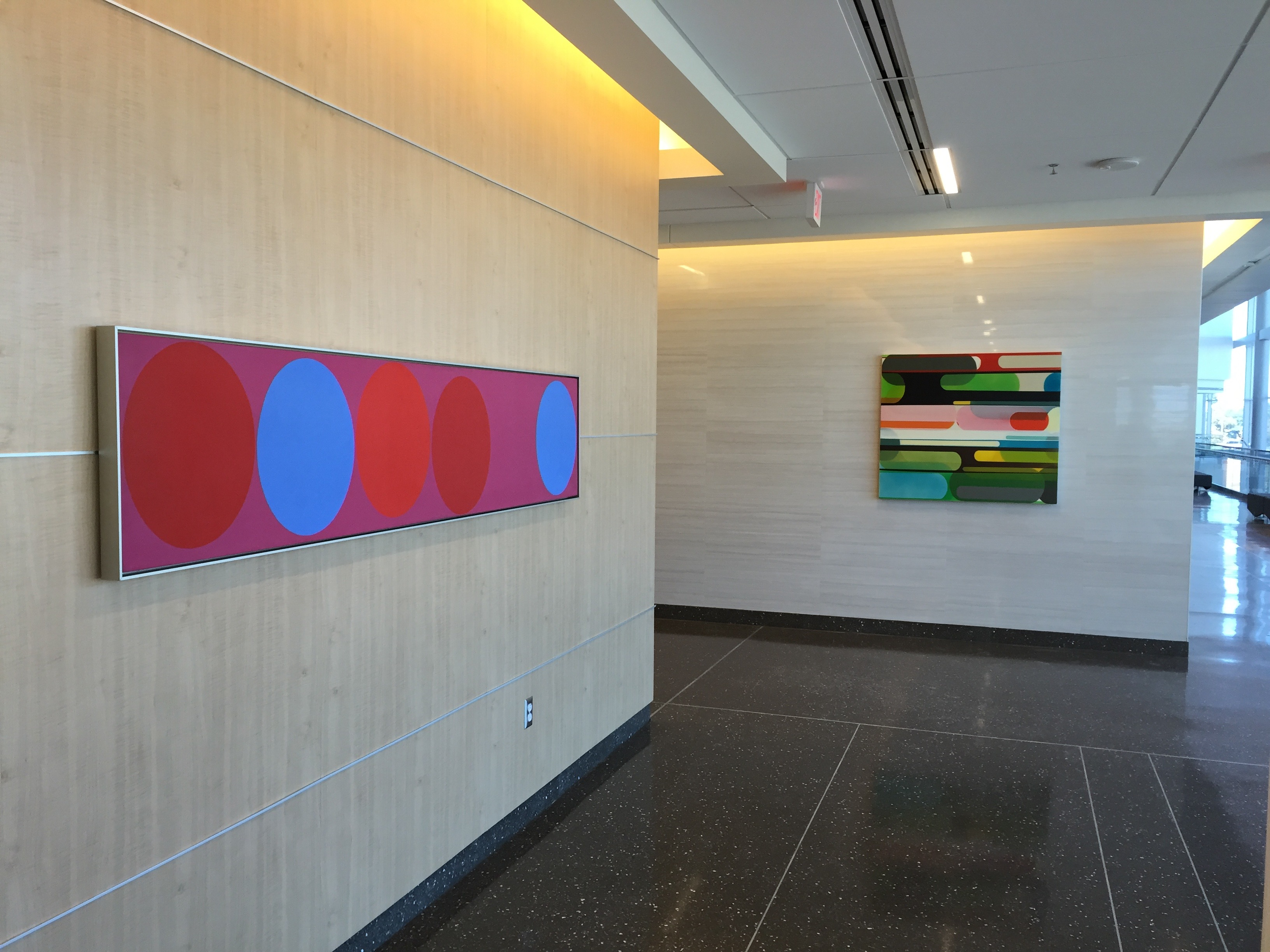 Art advisory by Carneal Simmons.  Works by Oli Sihvonen and Susan Dory at UT Southwestern Clements University Hospital