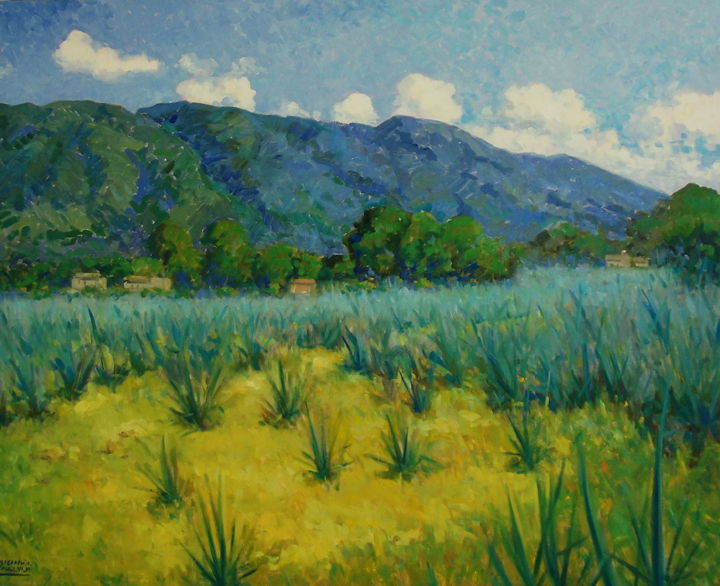 Jalisco Agave Field by Michael Carlyle