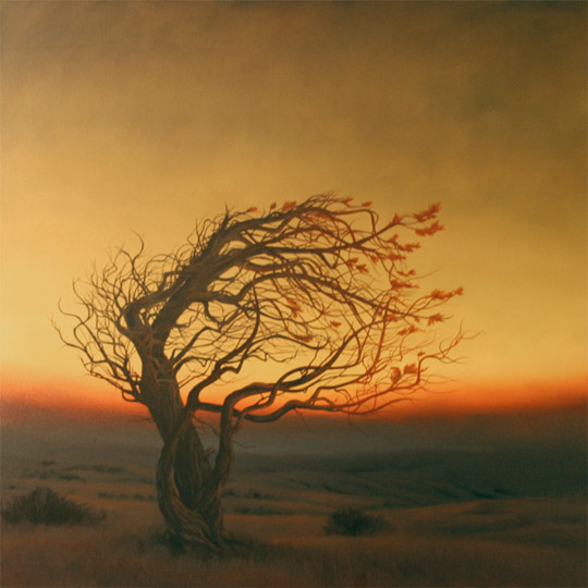 Dawn Waters Baker, Faith, oil on canvas, 40x40 in.